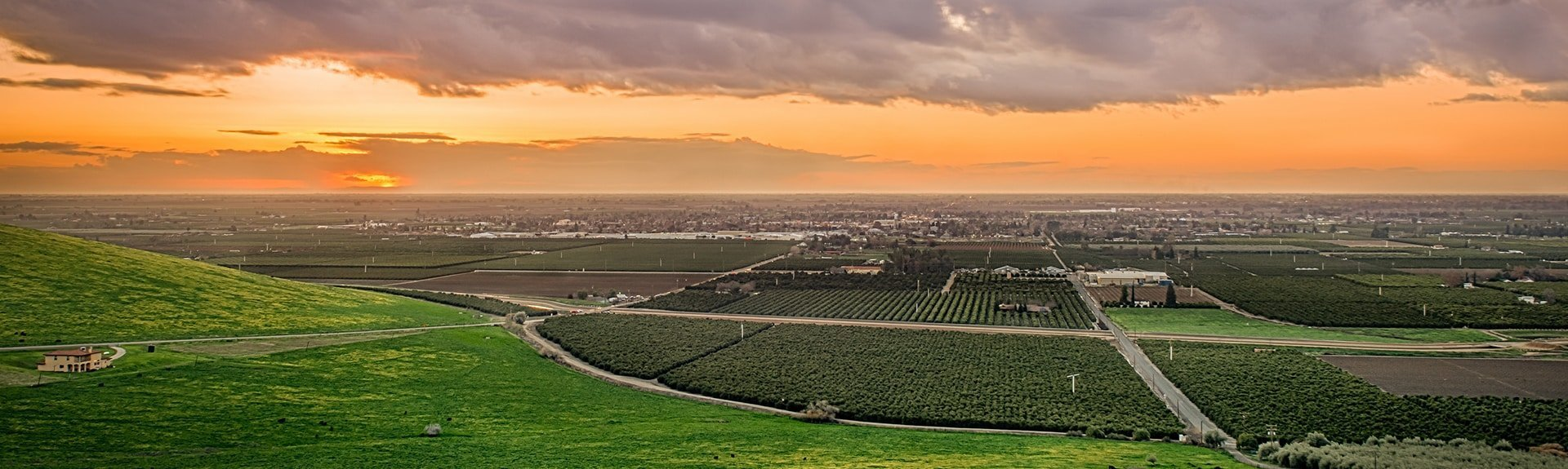 View of California agriculture
